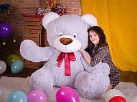 Медведь Большой Степа серый