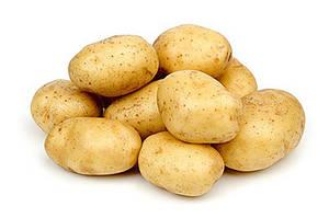 Картопля на посадку