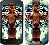 "Чехол на Huawei Ascend Y600 Злой тигр ""866c-486-328"""