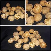 Натуральный декор - скорлупа грецких орехов, 25 шт., 10 гр.