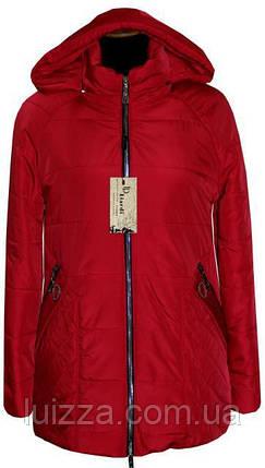 Женская куртка весна-осень батал 46 - 62рр красны, фото 2