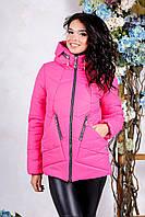 Куртка Деми Утепленная Силиконом+Капюшон Малиновый Большие Размеры 44 по 56