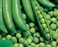 Семена Горох Динга бумажный мешок 5кг (Satimex)
