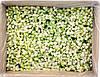 Цуккини резаный кубик замороженный