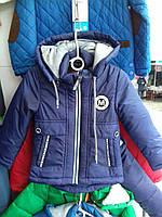 Куртка демисезонная для мальчика на 1-5 лет синего цвета с капюшоном оптом