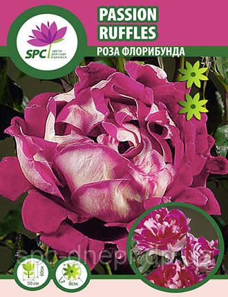 Роза флорибунда Passion Ruffles, фото 2