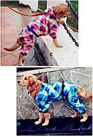"""Дождевик для собак средних и крупных пород """"Клетка"""". Одежда для собак."""