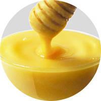 Мед подсолнечной оптом