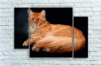 """Модульна картина"""" Рудий кіт"""""""