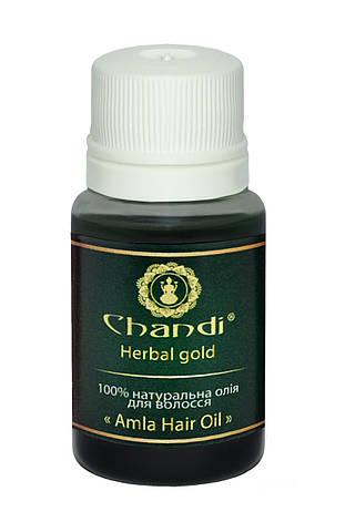 """Натуральна олія для волосся """"Амла"""" Chandi, 10мл, фото 2"""