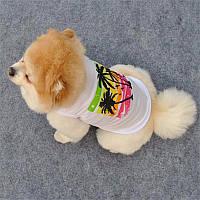 Футболка для маленьких собак Пальмы