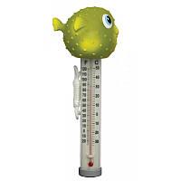 Термометр - игрушка для бассейна рыбка Фугу
