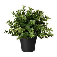 Искусственное растение в горшке IKEA FEJKA 9 см орегано 103.751.59