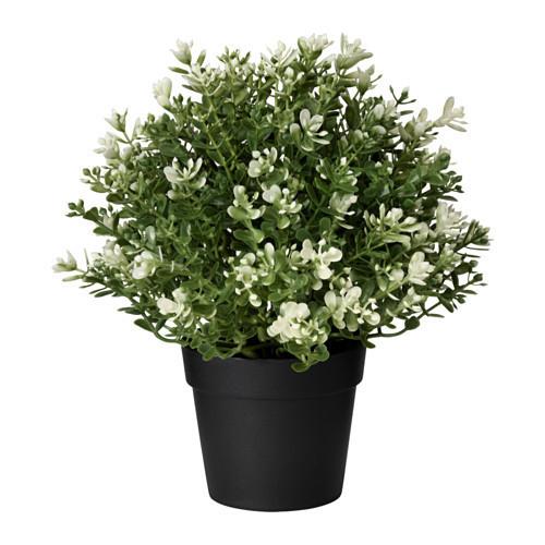 Искусственное растение в горшке IKEA FEJKA 9 см тимьян 903.751.55