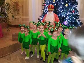 Прекрасные маленькие жабки на день Святого Николая!!! 3
