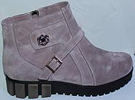 Замшевые женские ботинки большого размера, замшевая обувь больших размеров от производителя мод ВБ520зима-01