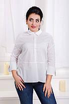 ДС466/1 Рубашка  (размеры 48-56), фото 2