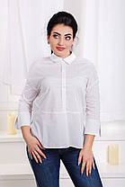 ДС466 Рубашка  (размеры 42-46), фото 3
