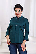 ДС466 Рубашка  (размеры 42-46), фото 2