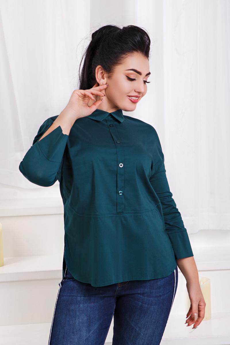 ДС466/1 Рубашка  (размеры 48-56)