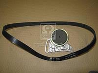Поликлиновой ременный комплект SKODA SUPERB (3U4), 12/01 - 03/08 TDI (Пр-во INA) 529 0099 10