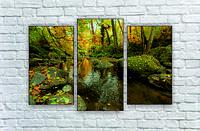 """Модульна картина """"Природа лісу"""""""
