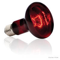 Лампа инфракрасная для террариума R25/100W