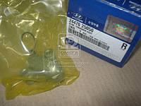 Гидронатяжитель цепи привода (пр-во Mobis) 2447025050