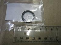 Кольцо уплотнительное (пр-во Nissan) 150668H700