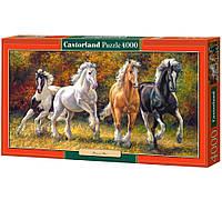Пазл Castorland, Пазл на 4000 деталей, Castorland, Пазлы большие, Пазлы с лошадьми, Пазлы с животными