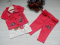 Стильный костюм (тройка) с бриджами Гитара розовый на девочку