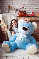 Медведь Тимоша в голубом
