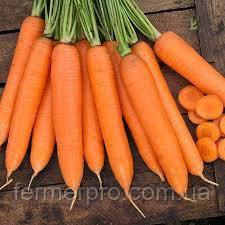 Семена моркови Сиркана F1 (1,6-1,8 мм) 100000 семян  Nunhems (Нуменс)