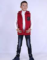 Жилетка для мальчика, демисезонная, утеплена тинсулейтом. BSST. 987QH_purple