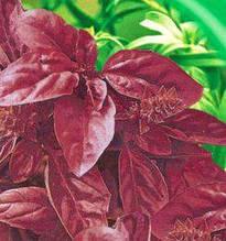 Семена фиолетового Опал (имп)