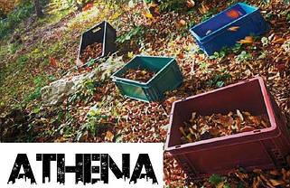Серія ATHENA