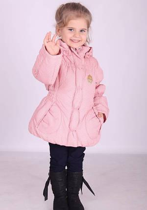 Куртка демисезонная для девочки  Donilo  1963(M)A, фото 2