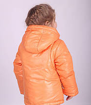 Куртка демисезонная для девочки 1080, фото 2