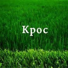 Регулятор роста Крос (Хлормекват-хлорид)