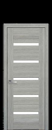 Дверное полотно Lira со стеклом сатин, фото 2