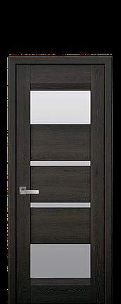 Дверное полотно Ibiza со стеклом сатин, фото 2