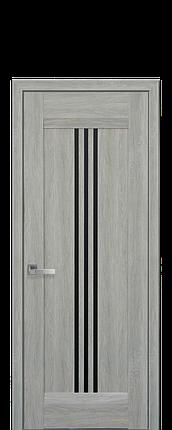 Дверное полотно Race с черным стеклом, фото 2