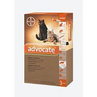 Капли от блох и клещей Адвокат® (для котов, кошек и хорей до 4 кг), 1 пипетка 0,4мл