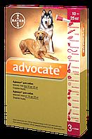 Капли от блох и клещей Адвокат® (для собак от 10 до 25 кг), 1 пипетка 2,5мл