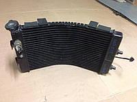 Радиатор Yamaha GTS 1000