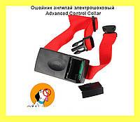 Ошейник антилай электрошоковый  Advanced Control Collar!Опт