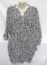 Рубашка-туника женская стильная размер универсальный 52-56 купить оптом со склада 7км Одесса