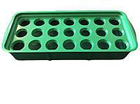 Луковичница пластиковая для выгонки лука на зелень