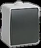 ВС20-1-0-ФСр Выключатель одноклавишный для открытой установки IP54 (EVS10-K03-10-54-DC) IEK