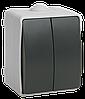 ВС20-2-0-ФСр Выключатель двухклавишный для открытой установки IP54 (EVS20-K03-10-54-DC) IEK